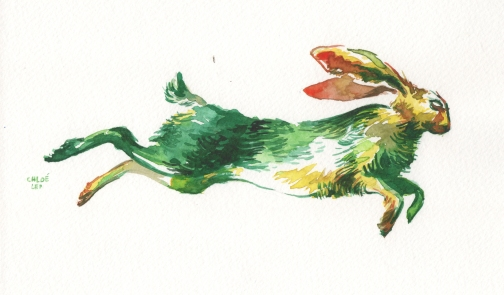 green-rabbit-jump