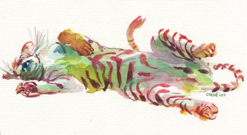 napping-tiger